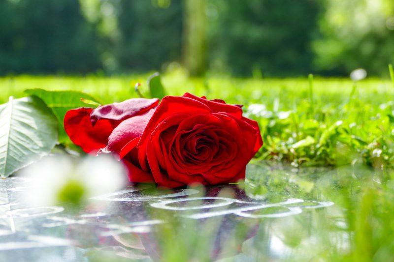 O jakich szczegółach należy pamiętać przed pogrzebem?